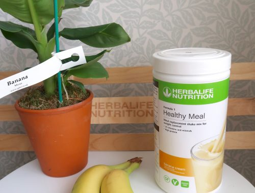 herbalife banana cream healthy meal with a banana plant and a bunch of bananas